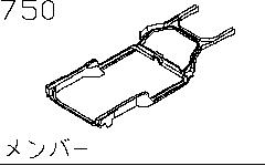 Member (Body)